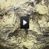 15 tonnás duguláselhárítás